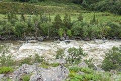 Κοιλάδα Chulcha Στοκ εικόνες με δικαίωμα ελεύθερης χρήσης