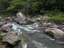 Κοιλάδα Mitake σε Okutama, Τόκιο Στοκ εικόνα με δικαίωμα ελεύθερης χρήσης