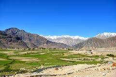 Κοιλάδα Nubra σε Ladakh, Ινδία Στοκ Φωτογραφία