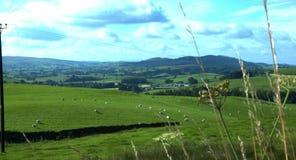 Κοιλάδα Shap, Cumbria απόθεμα βίντεο