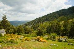 Κοιλάδα Valhondillo Guadarrama στη σειρά Στοκ εικόνα με δικαίωμα ελεύθερης χρήσης