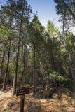 Κοιλάδα Yosemite, εθνικό πάρκο Yosemite, Καλιφόρνια, ΗΠΑ Στοκ φωτογραφία με δικαίωμα ελεύθερης χρήσης