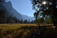 Κοιλάδα Yosemite Στοκ εικόνα με δικαίωμα ελεύθερης χρήσης