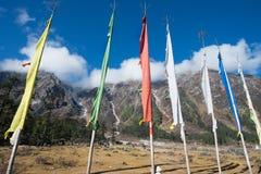 Κοιλάδα Yumthang, Ινδία Στοκ φωτογραφία με δικαίωμα ελεύθερης χρήσης