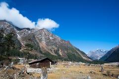Κοιλάδα Yumthang, Ινδία Στοκ εικόνα με δικαίωμα ελεύθερης χρήσης