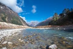 Κοιλάδα Yumthang, Ινδία Στοκ Εικόνα