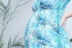 Κοιλιά εγκυμοσύνης στο φόρεμα happy motherhood Γυναίκα που αναμένει τη γέννηση μωρών στο τρίτο τρίμηνο, που είναι μητέρα Προγενέθ Στοκ Εικόνες