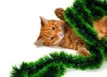 Κοκκινομάλλες γατάκι που βρίσκεται στην πλευρά του στις διακοσμήσεις Χριστουγέννων Στοκ Φωτογραφία