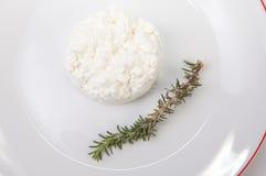 Κοκκοποιημένο τυρί εξοχικών σπιτιών με το δεντρολίβανο Στοκ Εικόνες