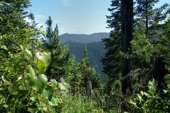 Κοκκώδες βουνό στοκ φωτογραφία