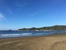 Κοκοφοίνικες EL Playa σε Guanacaste, Κόστα Ρίκα Στοκ Φωτογραφίες