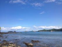 Κοκοφοίνικες Playa de EL Στοκ Εικόνες