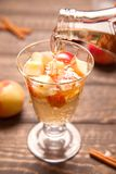Κοκτέιλ μηλίτη της Apple με την κανέλα και το μήλο Στοκ Εικόνα