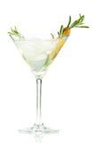 κοκτέιλ martini αλκοόλης Στοκ εικόνα με δικαίωμα ελεύθερης χρήσης