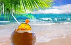 Κοκτέιλ καρύδων στην καραϊβική παραλία. Στοκ φωτογραφία με δικαίωμα ελεύθερης χρήσης