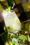 Κοκτέιλ με το άσπρο κρασί Στοκ εικόνα με δικαίωμα ελεύθερης χρήσης
