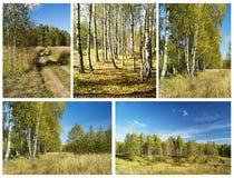Κολάζ από τα τοπία φθινοπώρου Στοκ εικόνα με δικαίωμα ελεύθερης χρήσης