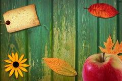 κολάζ μήλων Στοκ Εικόνες