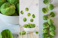 Κολάζ με τους φρέσκους νεαρούς βλαστούς των Βρυξελλών, ακατέργαστο οργανικό λαχανικό στοκ εικόνα