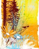κολάζ φυσικό Στοκ φωτογραφία με δικαίωμα ελεύθερης χρήσης