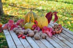 Κολοκύθα λαχανικών φθινοπώρου, καρύδια στον ξύλινο πίνακα Στοκ Φωτογραφίες