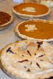 Κολοκύθα, πεκάν, και πίτα μούρων στην ημέρα των ευχαριστιών στοκ εικόνες