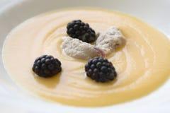 Κολοκύθα soupe με το Barry και knedle Στοκ Φωτογραφίες