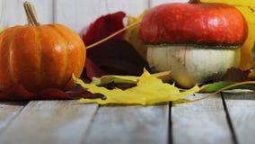 Κολοκύθες με τα φύλλα φθινοπώρου στο άσπρο ξύλινο υπόβαθρο απόθεμα βίντεο