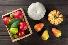 Κολοκύθες με τα ώριμα μήλα σε ένα κιβώτιο και αχλάδια στο σκοτεινό ξύλινο υπόβαθρο Εποχιακή εικόνα φθινοπώρου στοκ φωτογραφία με δικαίωμα ελεύθερης χρήσης