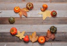 Κολοκύθες στο ξύλινο υπόβαθρο Αποκριές, ημέρα των ευχαριστιών ή εποχιακός φθινοπωρινός Στοκ Φωτογραφίες