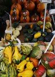 Κολοκύνθη αγοράς αγροτών στοκ φωτογραφίες