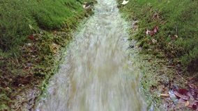 Κολπίσκος βουνών Ποταμός ρυακιών ρευμάτων νερού που ρέει στο πράσινο πάρκο το καλοκαίρι ρέοντας ύδωρ μικρός καταρράκτης ποταμών απόθεμα βίντεο
