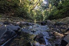 Κολπίσκος με τις πέτρες μεταξύ του δάσους Santa Ρίτα do Passa Quatro, São Paulo, Βραζιλία στοκ φωτογραφία με δικαίωμα ελεύθερης χρήσης
