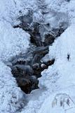 κολπίσκος παγωμένος Στοκ Εικόνες