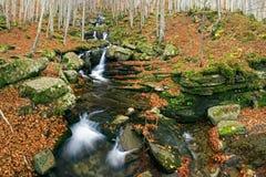 κολπίσκος φθινοπώρου Στοκ Εικόνα