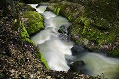 Κολπίσκος φθινοπώρου στοκ φωτογραφίες με δικαίωμα ελεύθερης χρήσης