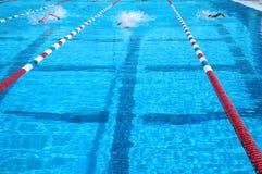 κολυμβητές Στοκ Φωτογραφίες