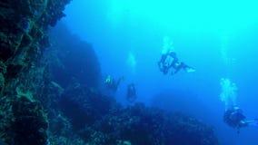 Κολυμπήστε κατά μήκος της κλιτύος ενός απότομου βράχου σκοπέλων με τους πολλαπλάσιους δύτες μπροστά απόθεμα βίντεο