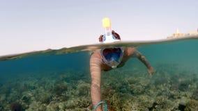 Κολυμπήστε με αναπνευτήρα κολυμπά τη διασπασμένη άποψη, Ερυθρά Θάλασσα, Αίγυπτος απόθεμα βίντεο