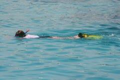 κολυμπήστε με αναπνευτή&r στοκ εικόνες με δικαίωμα ελεύθερης χρήσης