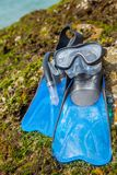 Κολυμπήστε τα βατραχοπέδιλα, καλύψτε, κολυμπήστε με αναπνευτήρα στη θάλασσα παραλιών βρύου βράχου και το μπλε SK στοκ εικόνες