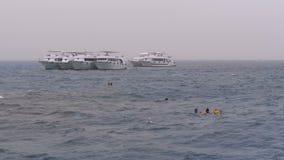 Κολυμπώντας με αναπνευτήρα στην ανοικτή θάλασσα, και το σκάφανδρο που βουτά στο υπόβαθρο των γιοτ τουριστών E απόθεμα βίντεο