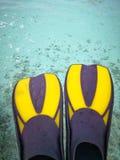 Κολυμπώντας πτερύγια βατραχοπέδιλων εξοπλισμού στοκ φωτογραφία με δικαίωμα ελεύθερης χρήσης