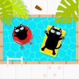 κολυμπώντας ύδωρ ομπρελών λιμνών Μαύρη γάτα που επιπλέει στο κίτρινο στρώμα νερού επιπλεόντων σωμάτων λιμνών και τον κόκκινο κύκλ ελεύθερη απεικόνιση δικαιώματος