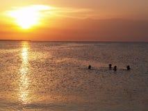 κολύμβηση ηλιοβασιλέματος ανθρώπων Στοκ Εικόνες
