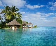 κολύμβηση θερέτρων λιμνών π& στοκ εικόνες με δικαίωμα ελεύθερης χρήσης