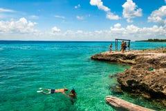 Κολύμβηση με αναπνευστήρα, κόλπος των χοίρων, Κούβα στοκ φωτογραφία