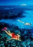 κολύμβηση με αναπνευστήρα σκοπέλων Στοκ φωτογραφία με δικαίωμα ελεύθερης χρήσης