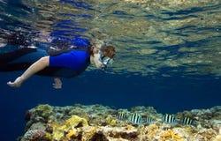 κολύμβηση με αναπνευστήρ& Στοκ Φωτογραφία