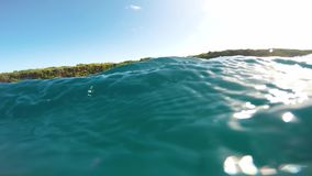 Κολύμβηση με τα δελφίνια στα μεγάλα βάθη Βίντεο με τους ήχους απόθεμα βίντεο